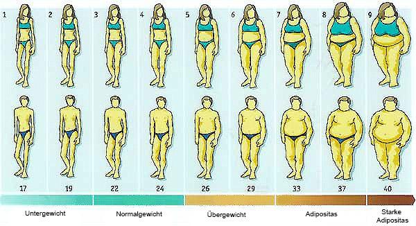 BMI-Verteilung